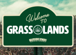 Outside Lands Grass Lands Music Festival Marijuana