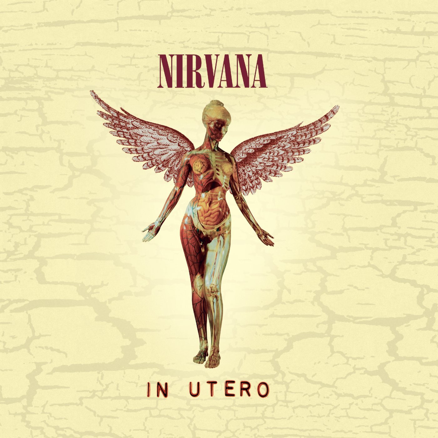Nirvana's In Utero artwork