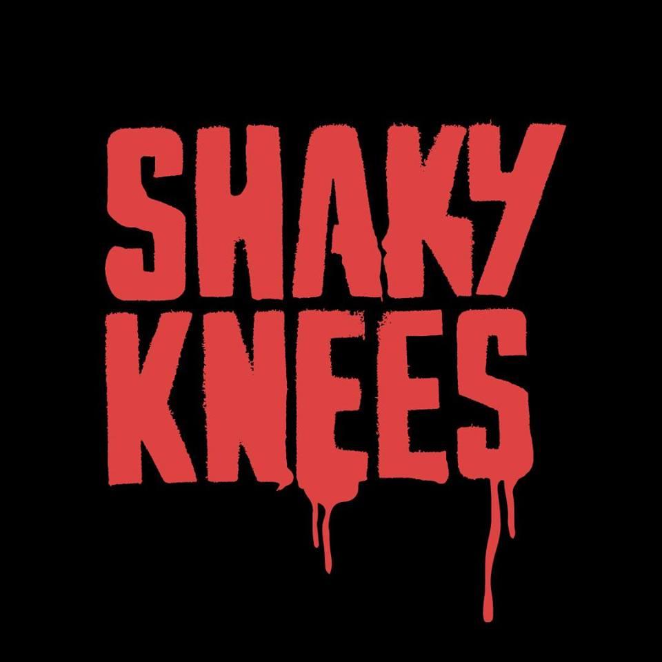 Shaky Knees 2019 festival