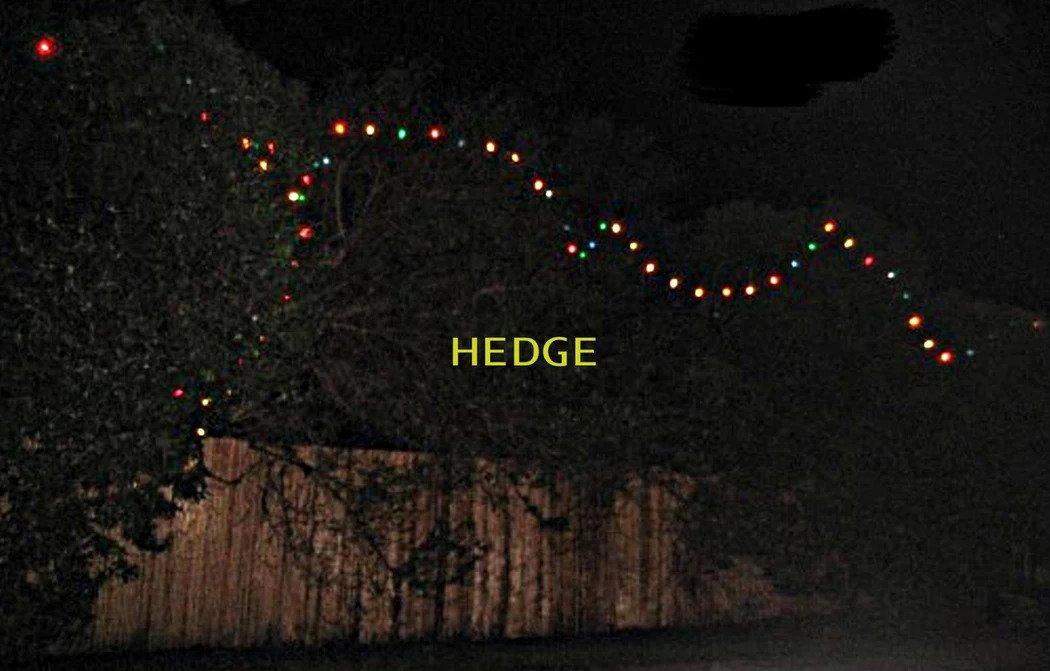 Bob Dylan Christmas Lights 2009