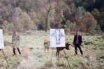 avey tare cows on hourglass pond saturdays again new album tour dates