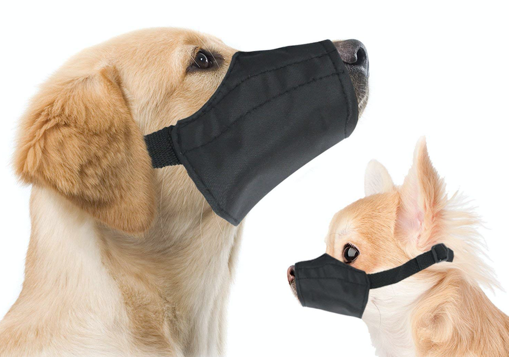 mute box or muzzle
