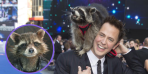 Oreo the Raccoon Rocket James Gunn Marvel guardians of the Galaxy RIP death obit