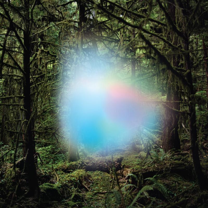 ghosts of the forest album cover artwork trey anastasio