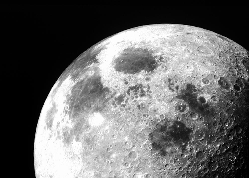 moon mlc premiere