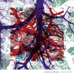 silversun pickups widow's weeds album cover artwork