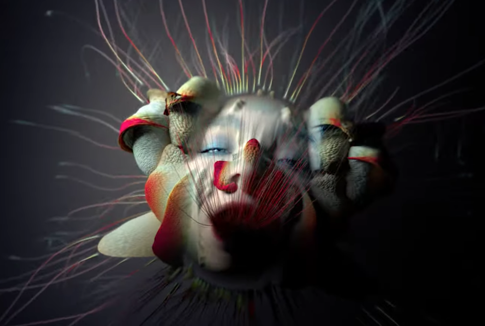 "Björk unveils wondrous music video for ""Tabula Rasa"": Watch"