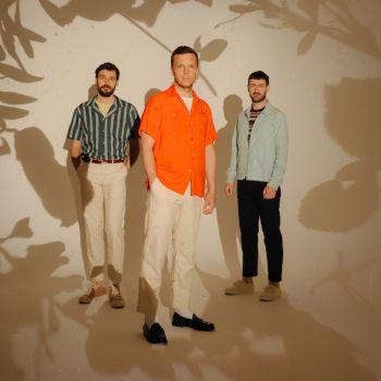 Friendly Fires new album Inflorescent Silhouettes album single