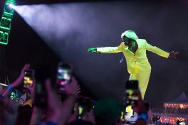 Tyler, the Creator Governors Ball 2019 Ben Kaye