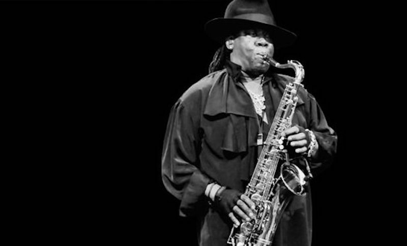 Clarence Clemons documentary Who do I think I am?