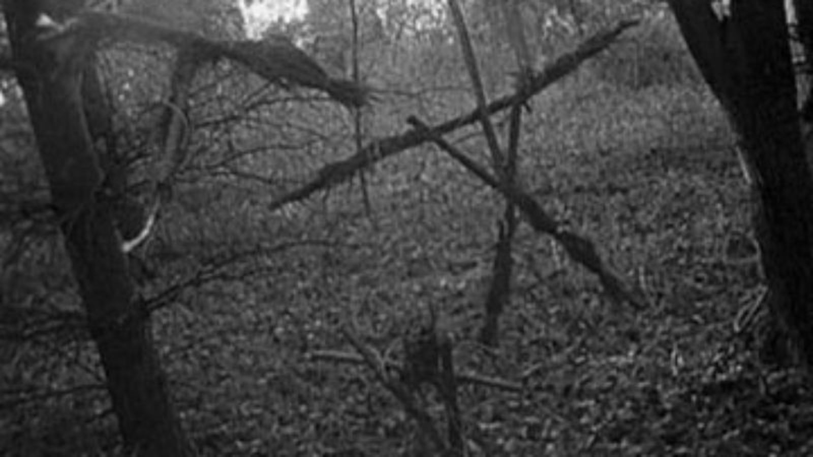 The Blair Witch Project | Classic Film Review | Consequence of Sound