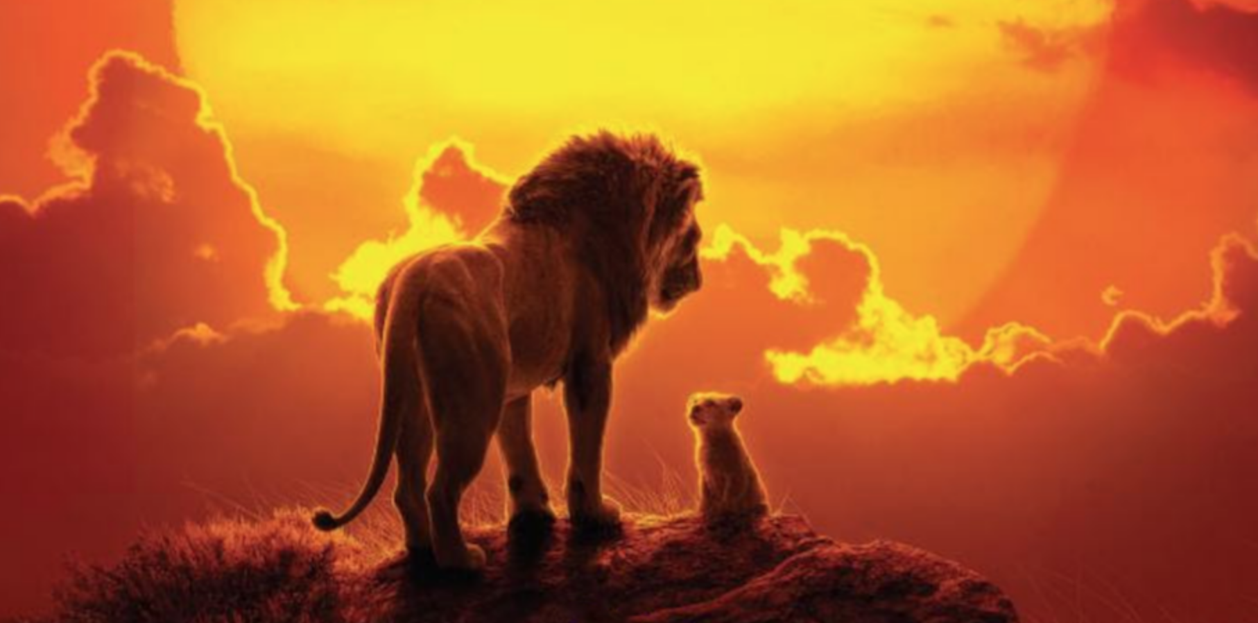 lion king stream