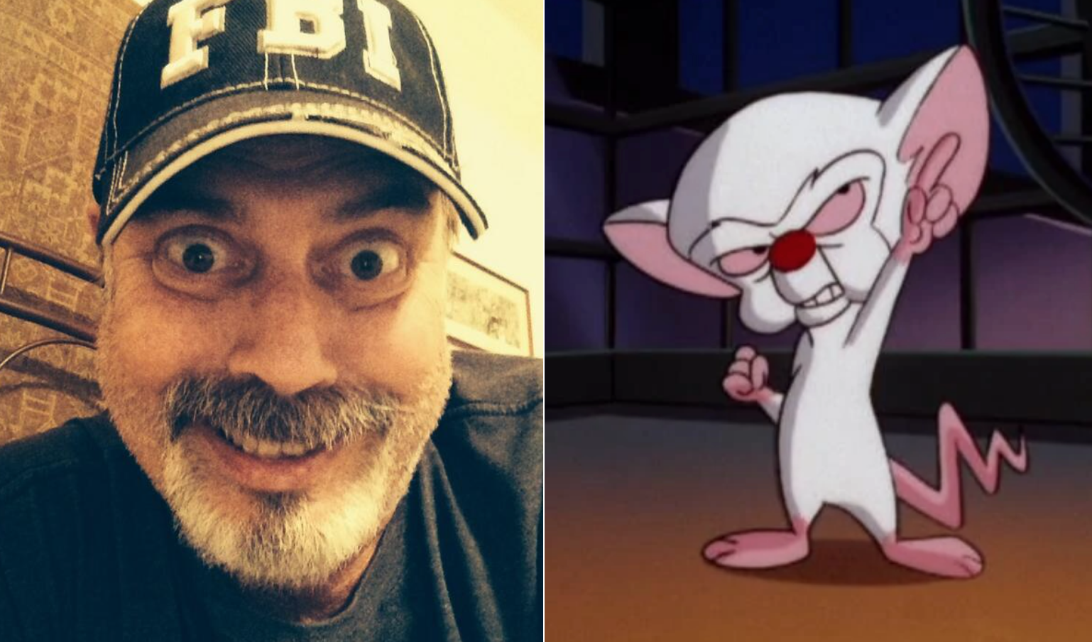 R.I.P. Gordon Bressack, Pinky and the Brain writer dead at 68