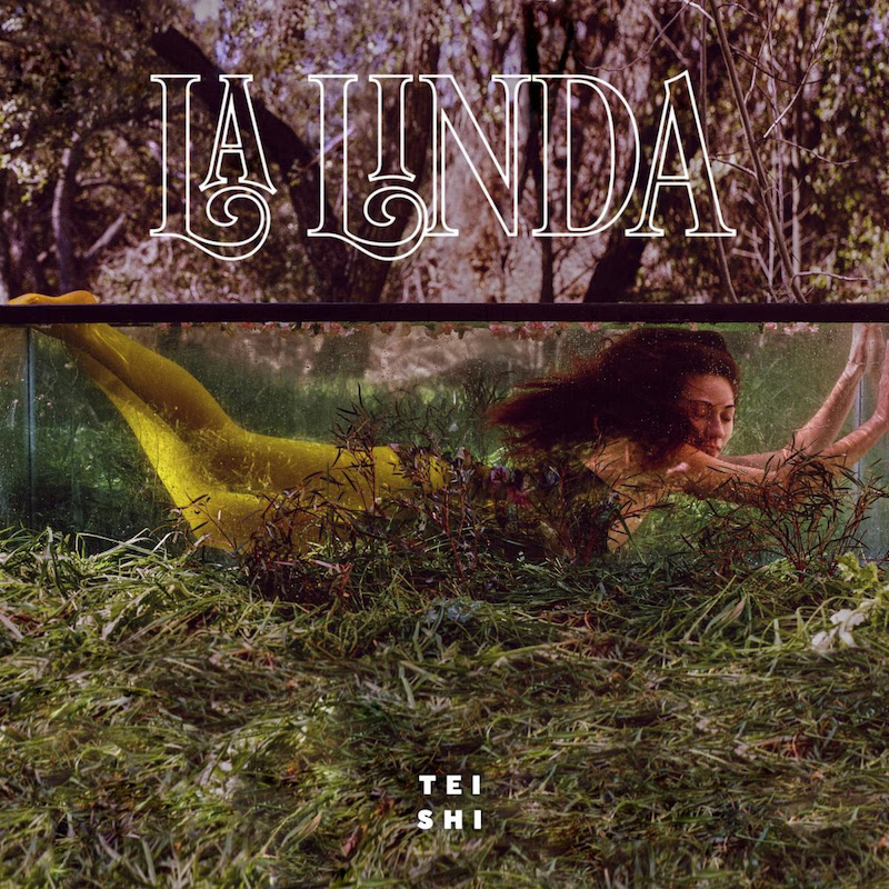 la linda tei shi artwork Tei Shi announces new album La Linda, shares Even If It Hurts featuring Blood Orange: Stream
