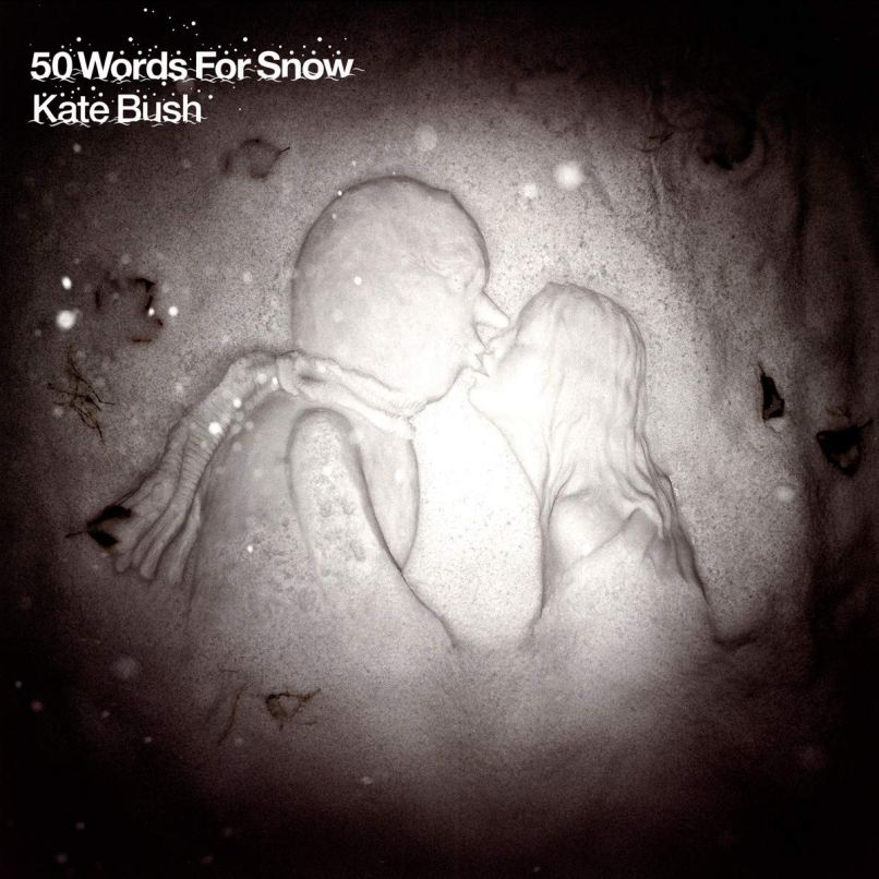 50 words for snow Top 25 Pop Albums of the 2010s