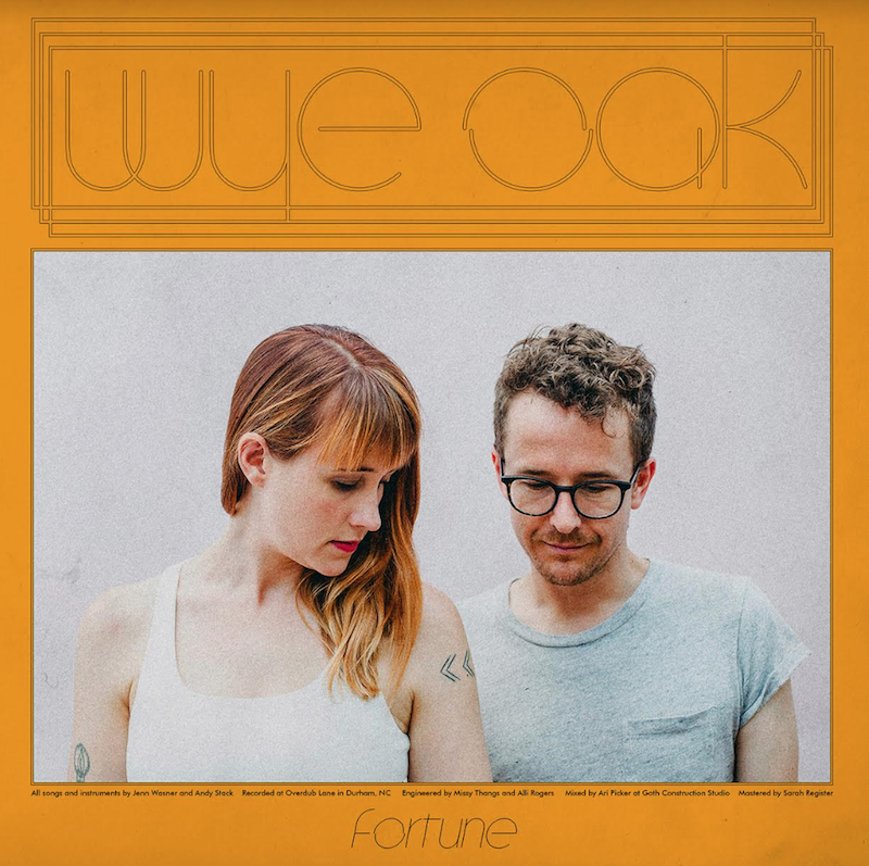 Wye Oak Fortune Track Artwork