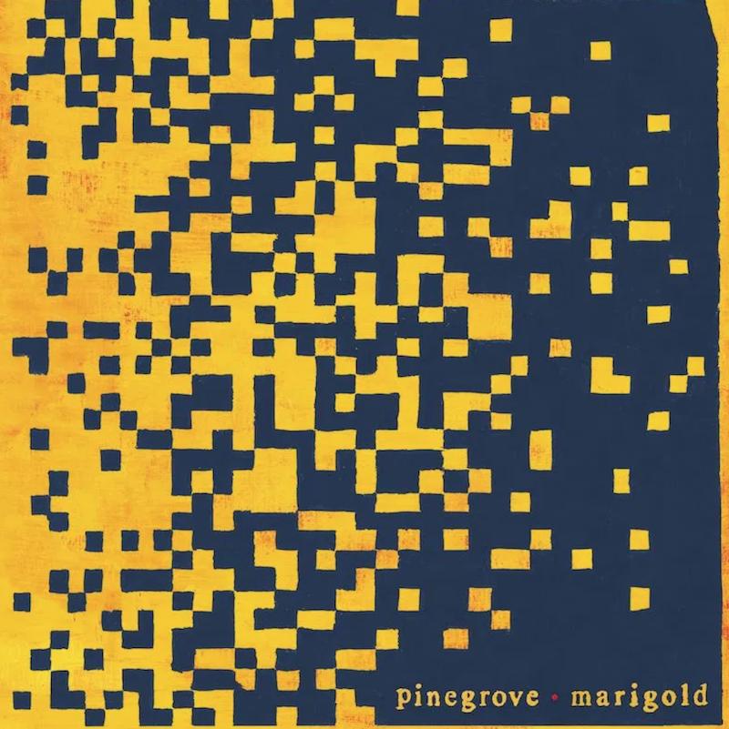 Pinegrove Marigold Album Artwork