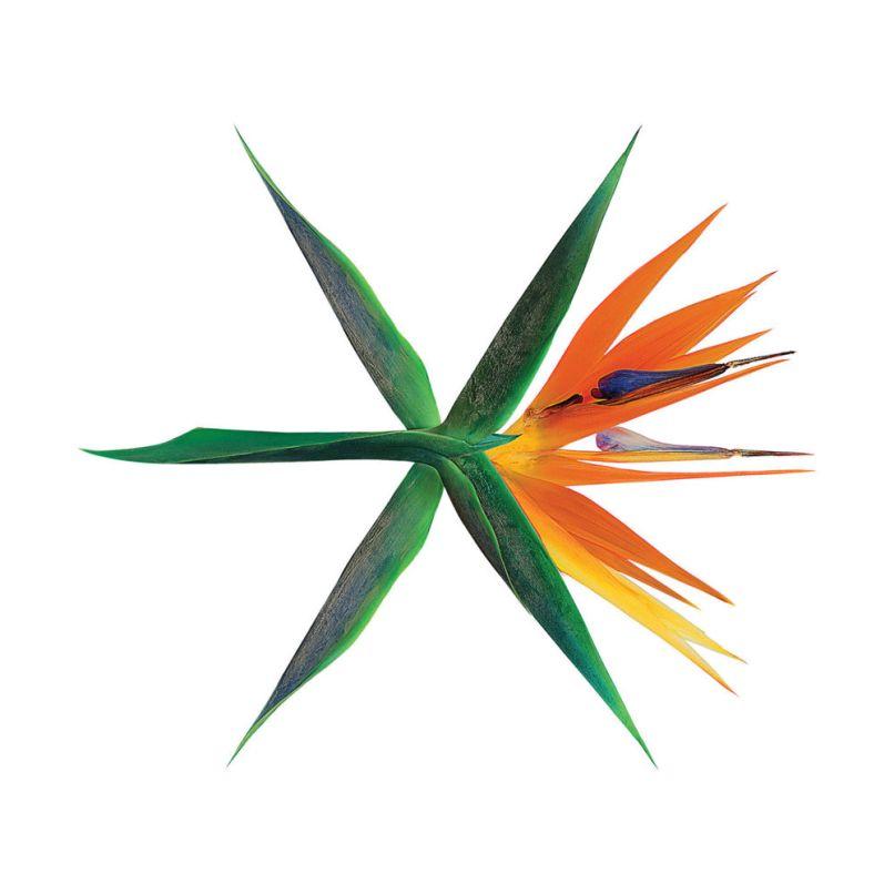 EXO - The War