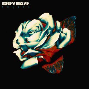 Grey Daze Amends Grey Daze   Amends