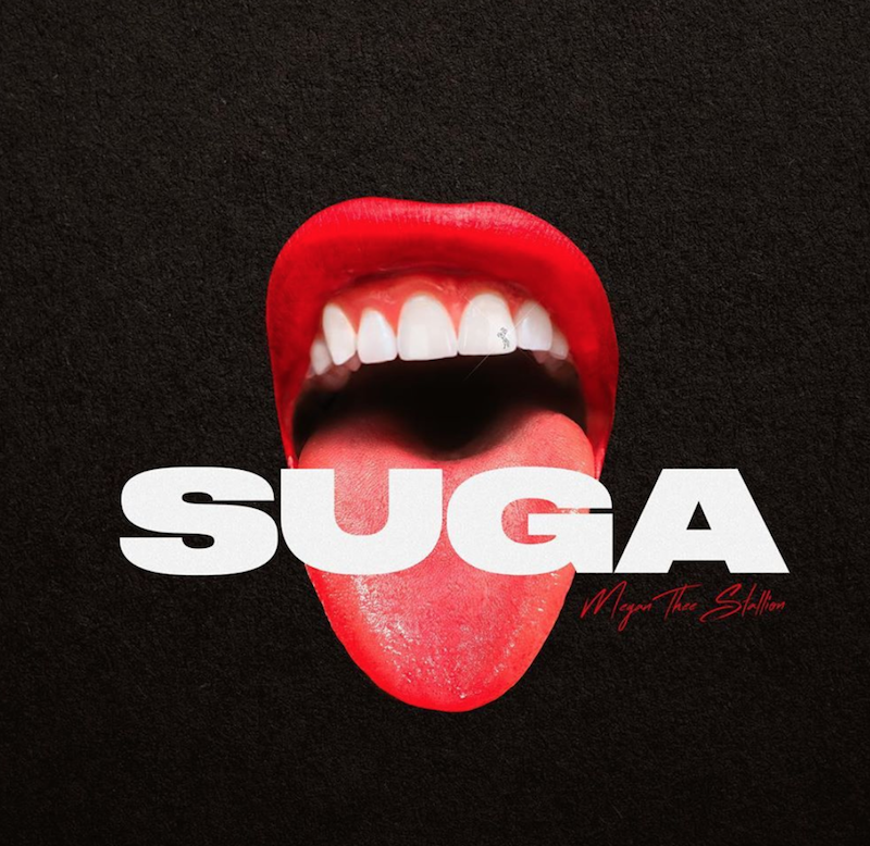Suga Megan Thee Stallion Album Artwork