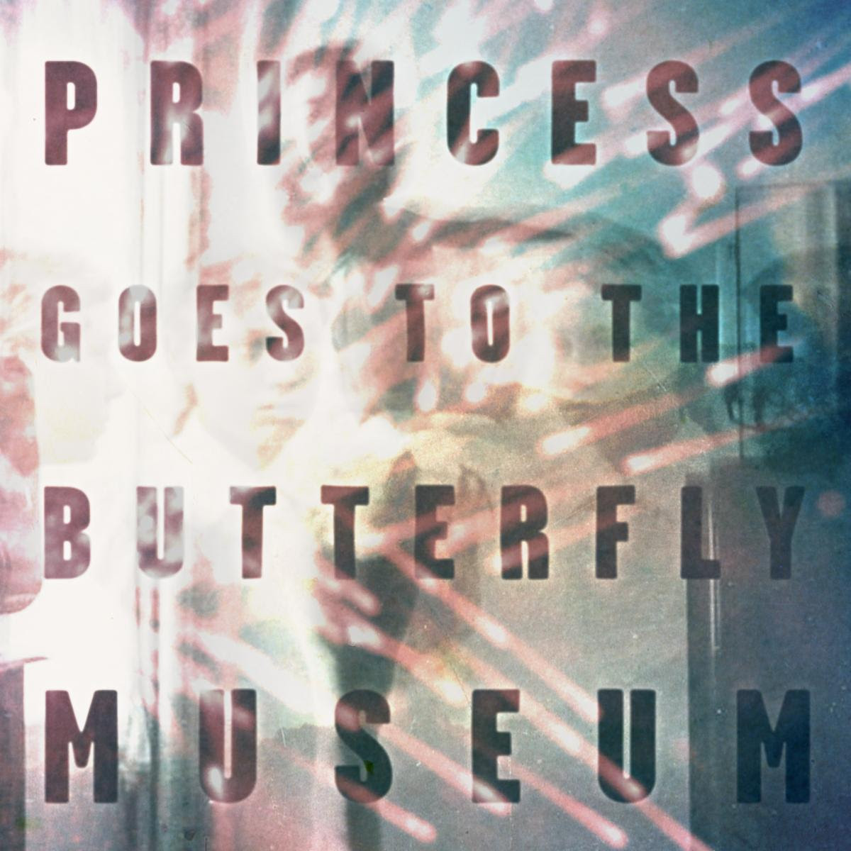 Princess Goes to the Butterfly Museum Artwork ep stream