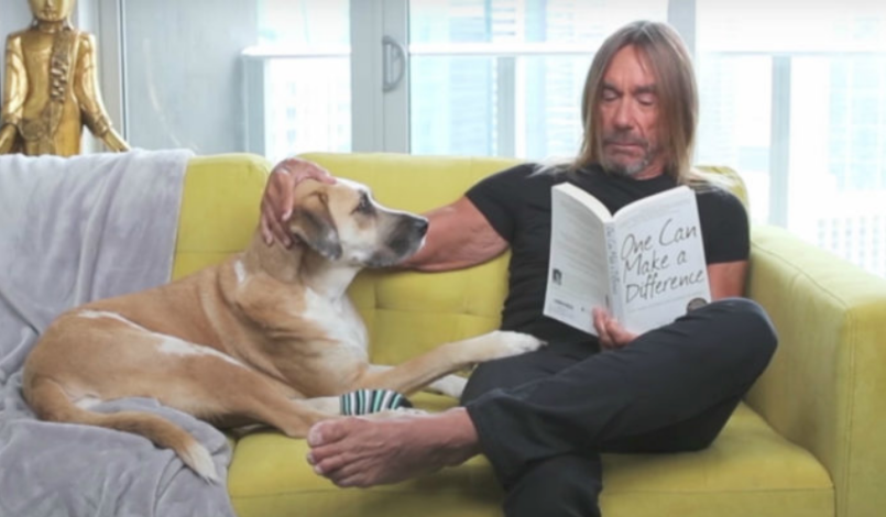 Iggy Pop and his dog