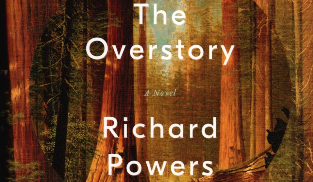 the overstory richard powers blitzen trapper masonic temple microdose 1 origins new song stream