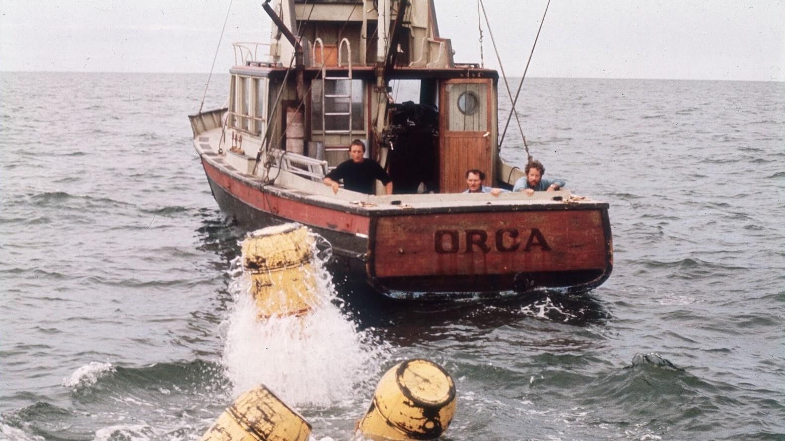 Orca Hai
