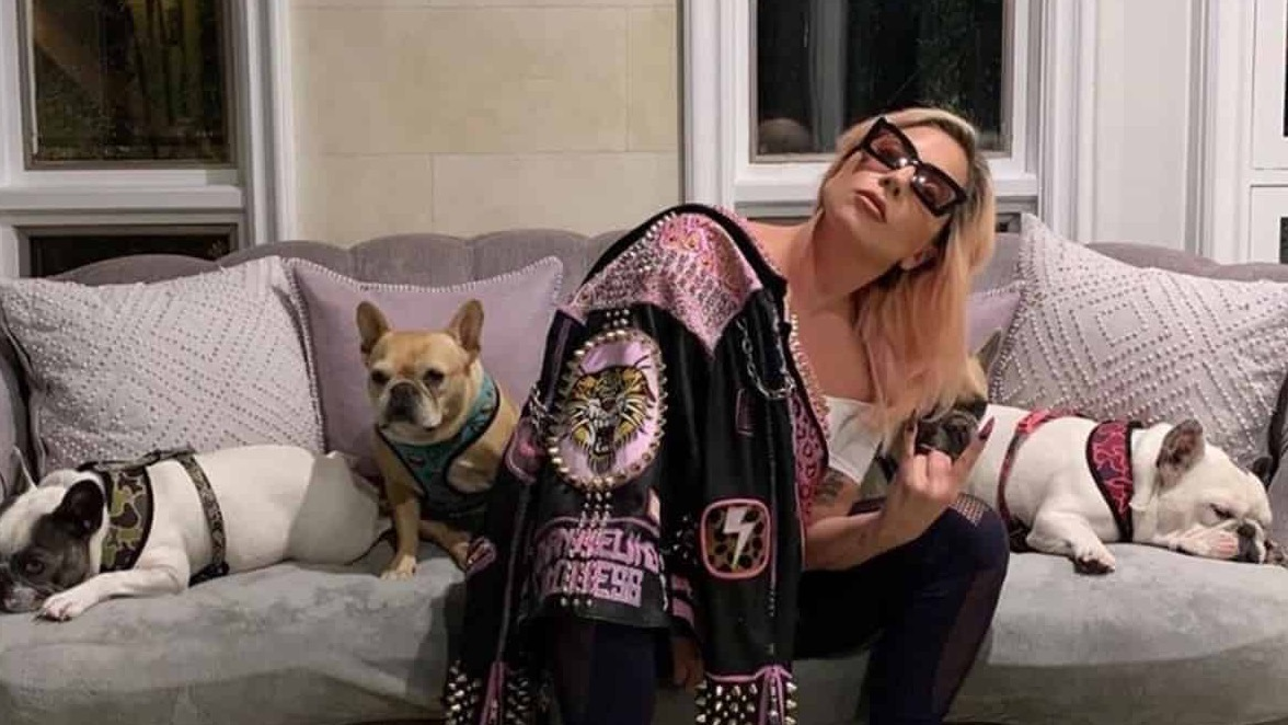 Lady Gaga's Bulldogs recovered safely by police