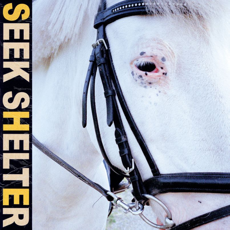Seek Shelter by Iceage album artwork cover art