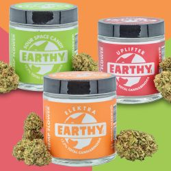 Try the Latest CBD Hemp Flower Strains